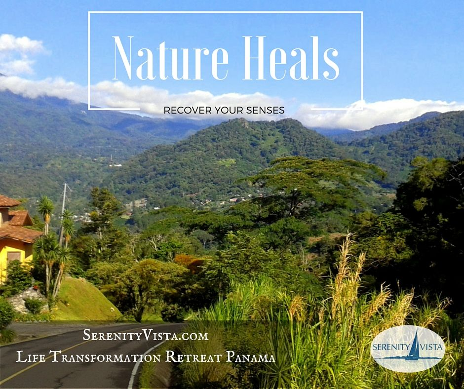 Recover from addiction - Nature-in-rehab