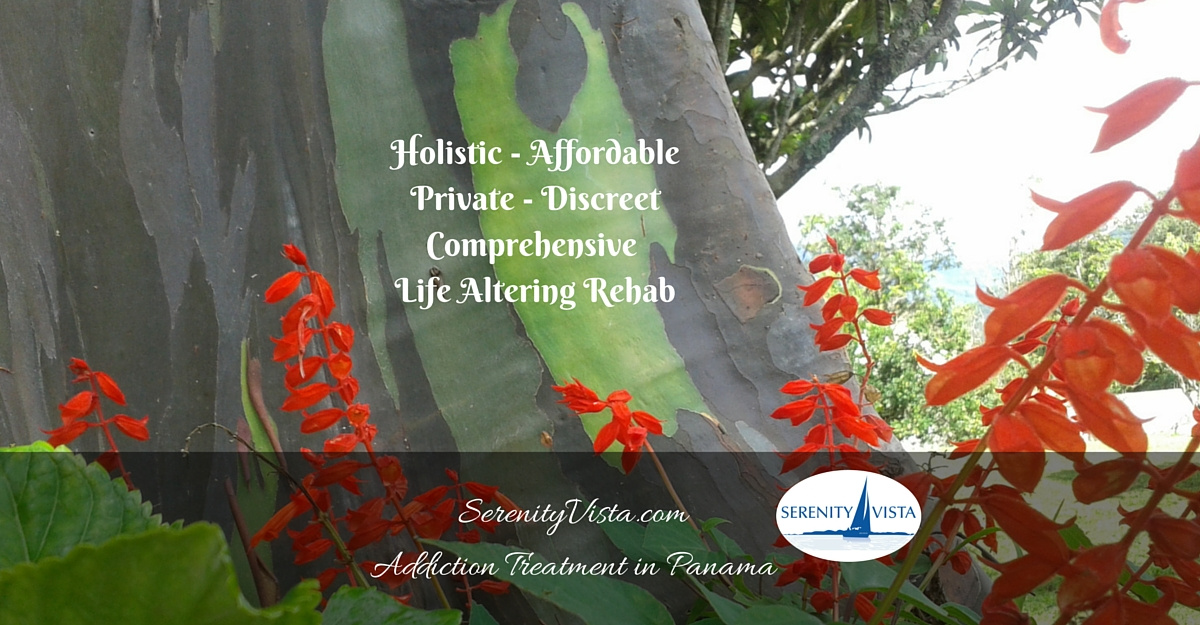 Serenity Vista private international addiction treatment is best drug rehab center.
