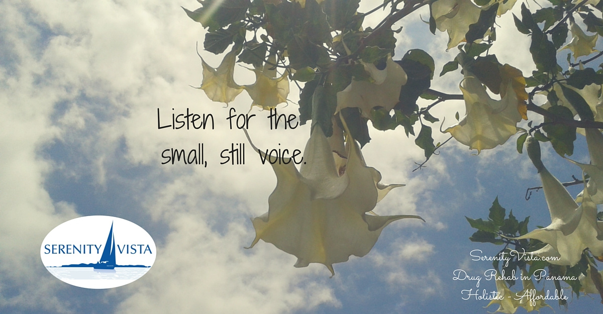 voices of addiction and recovery reviewed by Serenity Vista private international alcohol and drug rehab retreat; Listen to the small still voice