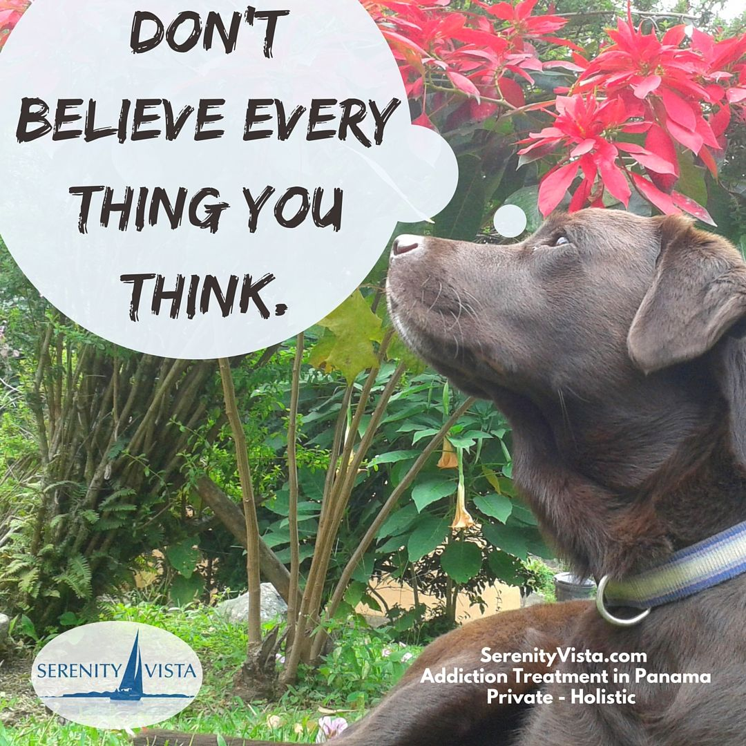 Don't believe your thoughts & addiction beliefs